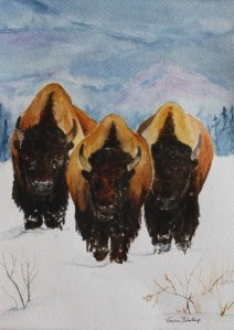watercolor of buffalo charging