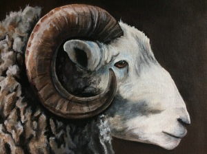 Acrylic painted ram on canvas